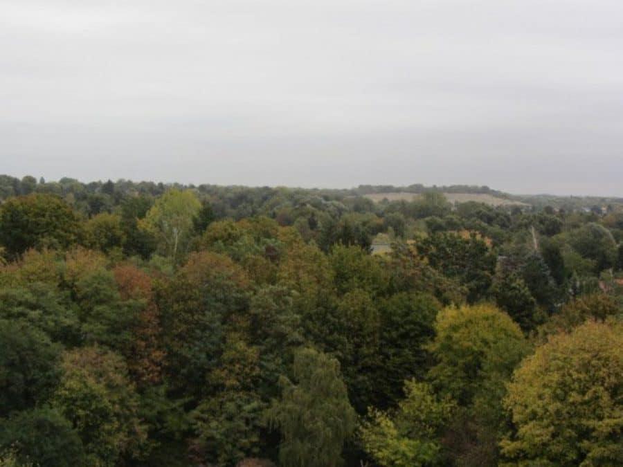 Komplett renovierte 1-Zimmer-Wohnung im grünen Berlin-Reinickendorf (Waidmannslust) zu vermieten! - Ausblick