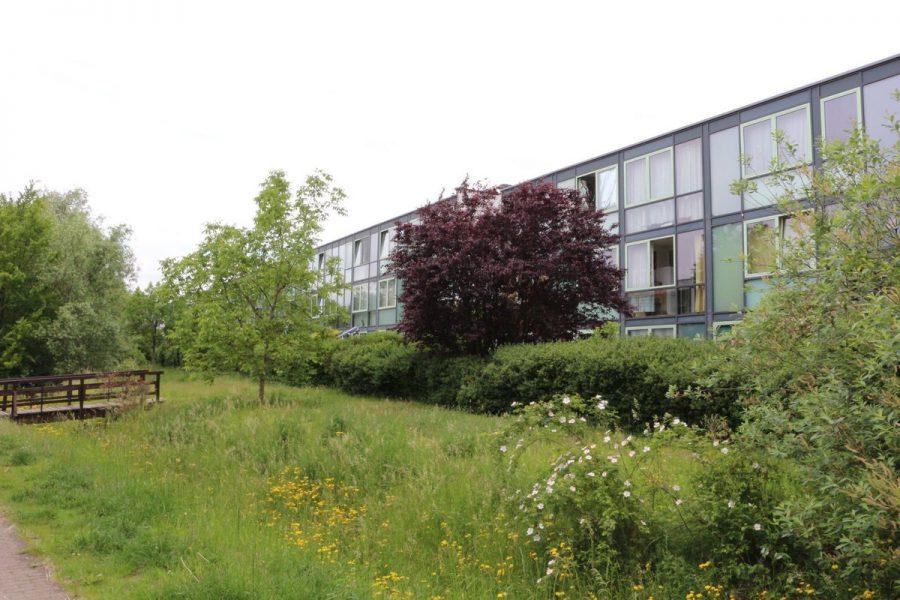 Fast wie im Reihenhaus: 4-Zimmer-Maisonette-Wohnung mit Wintergarten in ruhiger Seitenstraße von Berlin-Karow zu vermieten! - Hausansicht