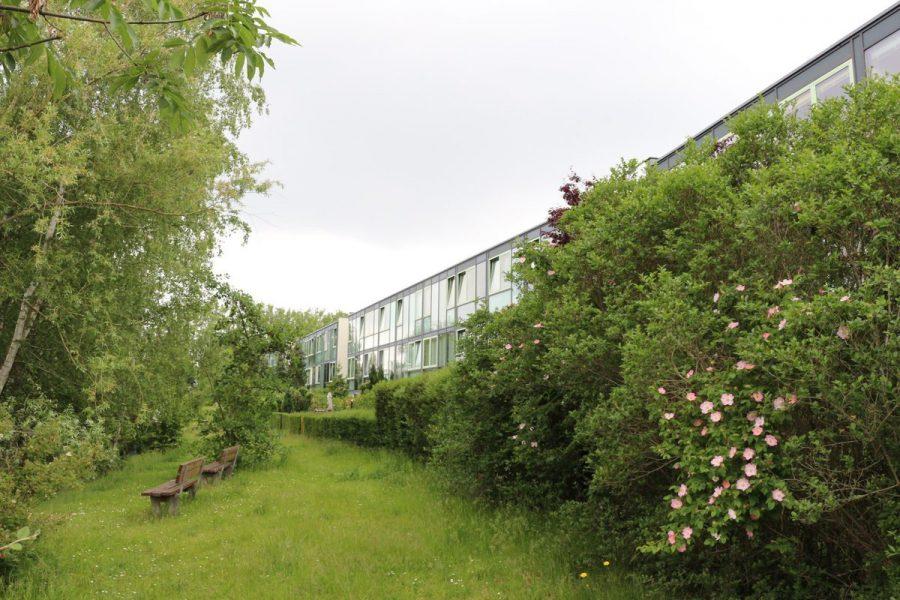 Fast wie im Reihenhaus: 4-Zimmer-Maisonette-Wohnung mit Wintergarten in ruhiger Seitenstraße von Berlin-Karow zu vermieten! - Grünes Idyll